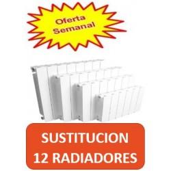 cambiar-12-radiadores.jpg